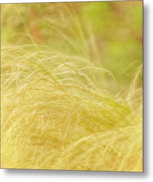 Swaying  Metal Print