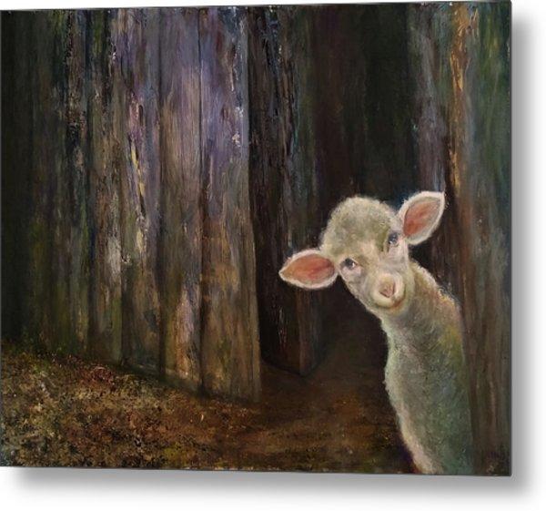 Sweet Lamb Metal Print