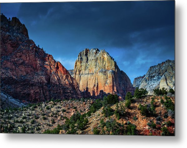 Sweet Light Metal Print