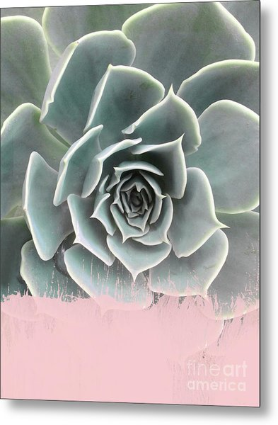 Sweet Pink Paint On Succulent Metal Print