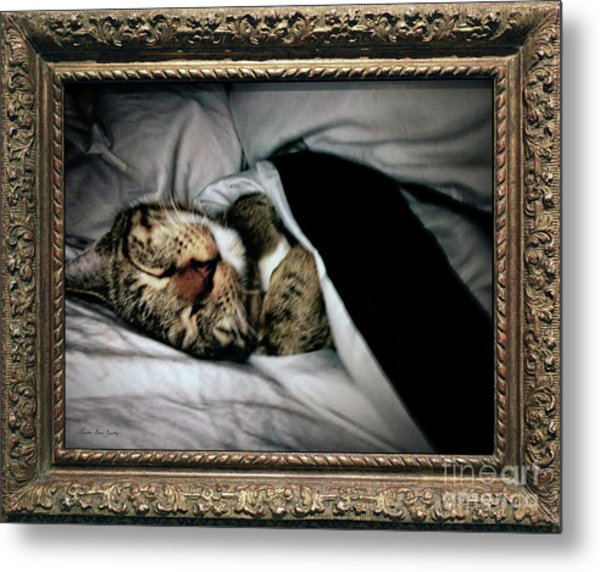 Metal Print featuring the photograph Sweet Simba Photo A8117 by Mas Art Studio