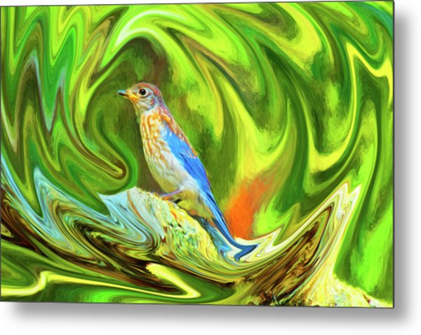 Swirling Bluebird  Metal Print