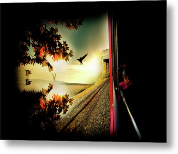 Switzerland Metal Print