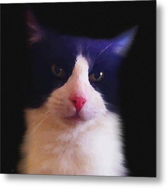 Sylvester Tuxedo Cat Metal Print