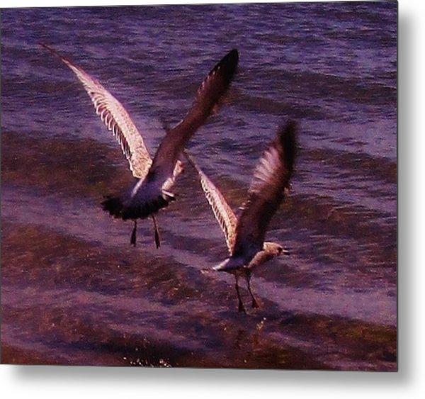 Synchronized Landing Metal Print