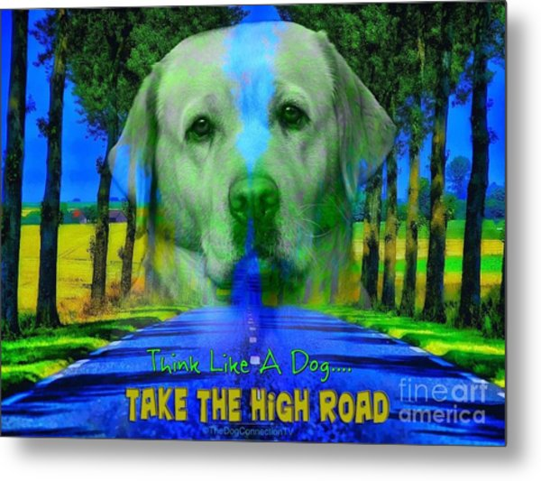 Take The High Road Metal Print