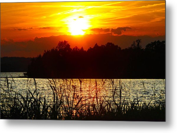 Tall Grass Sunset 2 Smith Mountain Lake Metal Print