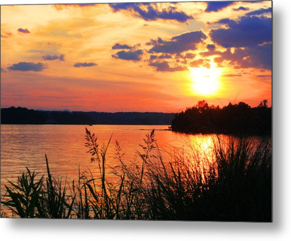 Tall Grass Sunset Smith Mountain Lake Metal Print