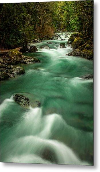 Tamihi Creek 2 Metal Print