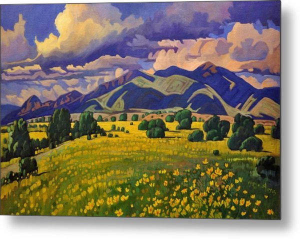 Taos Fields Of Yellow Metal Print