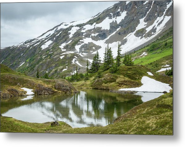 Metal Print featuring the photograph Tarns Of Nagoon 209 by Tim Newton