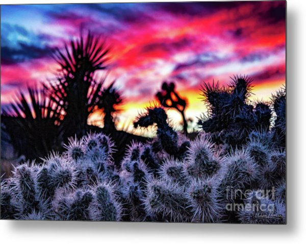 Teddy Bear Cholla Metal Print