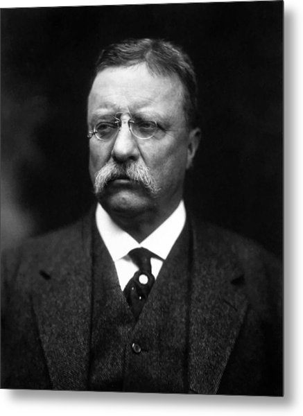 Teddy Roosevelt Metal Print