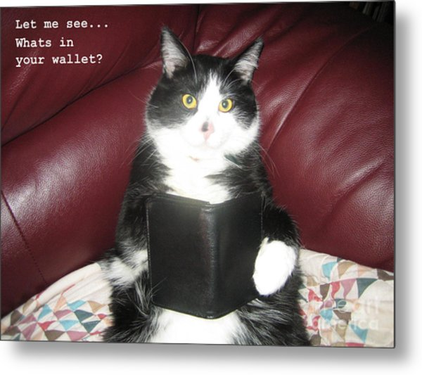 Teddy The Ninja Cat Wants To Know Whats In Your Wallet  Metal Print by Reb Frost