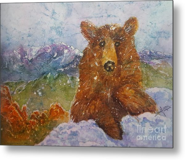 Teddy Wakes Up In The Most Desireable City In The Nation Metal Print