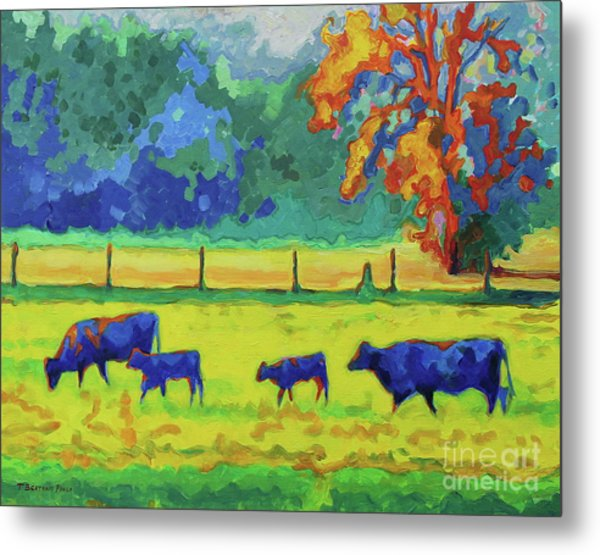 Texas Cows And Calves At Sunset Painting T Bertram Poole Metal Print