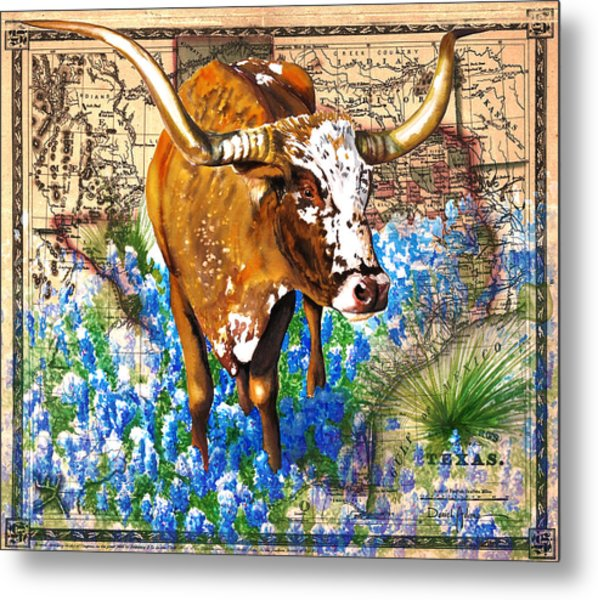 Texas Longhorn In Bluebonnets Metal Print