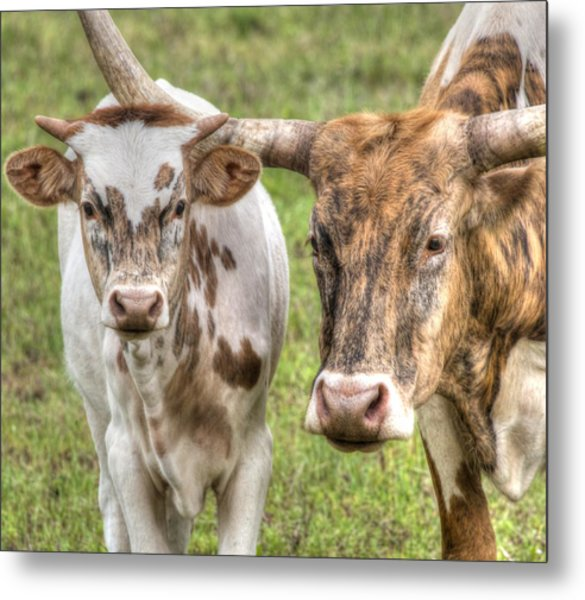 Texas Mother And Son Metal Print
