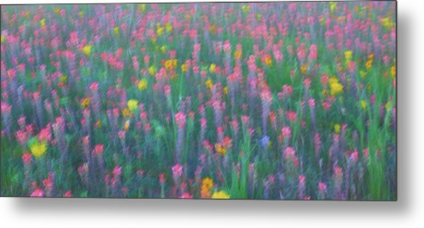 Texas Wildflowers Abstract Metal Print