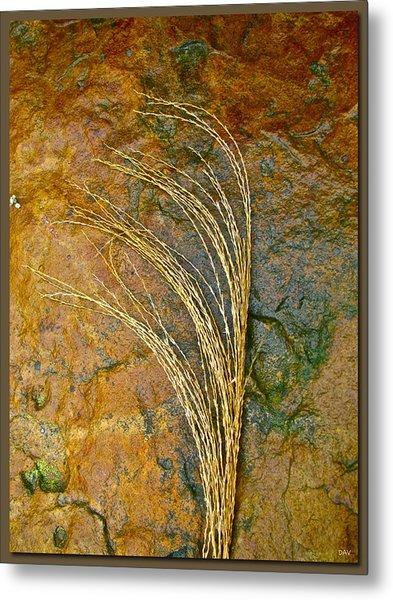 Textured Nature Metal Print