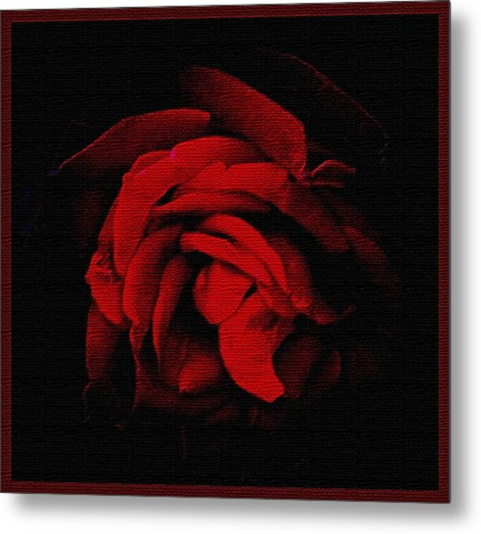 Textured Rose Metal Print by Russ Mullen