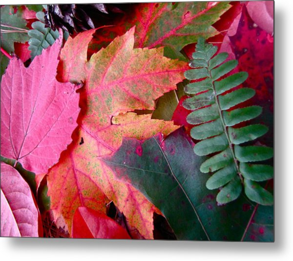 Textures Of Nature Metal Print