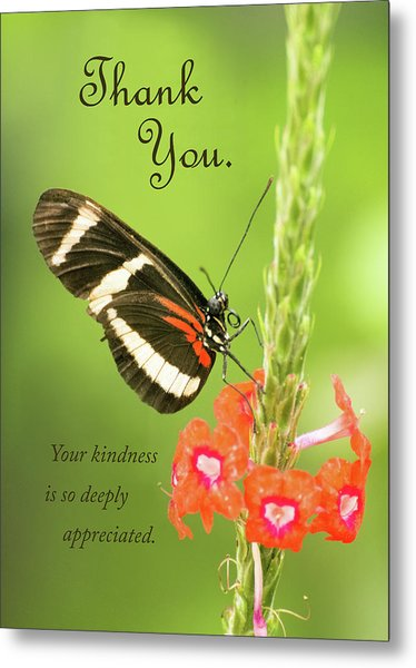 Thank You - Butterfly Metal Print