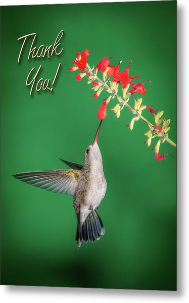 Thank You - Looking Up Metal Print