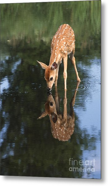 That Must Be Me Metal Print