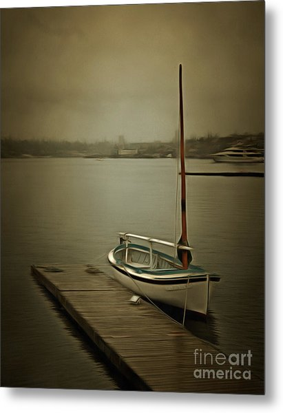 Metal Print featuring the photograph The Admirable by Susan Parish