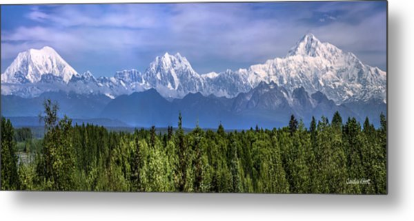 The Alaska Range Metal Print