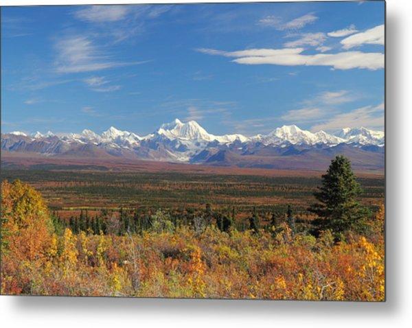 The Alaska Range From The Denali Highway Metal Print