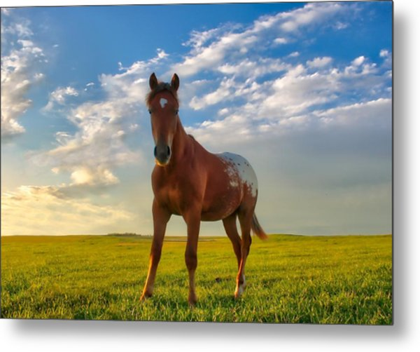 The Appy Metal Print