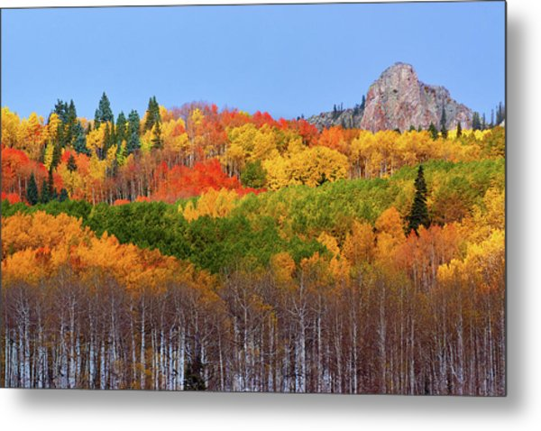 The Autumn Blanket Metal Print