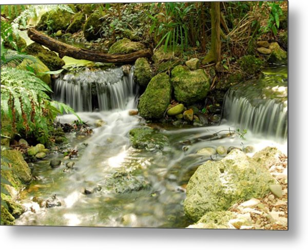 The Babbling Brook Metal Print