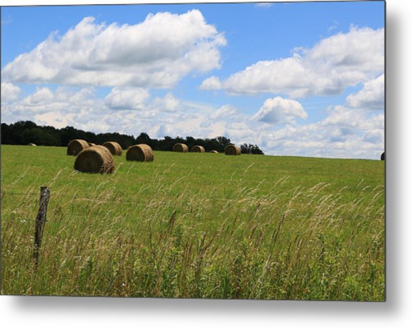 The Bales Of Summer 2 Metal Print