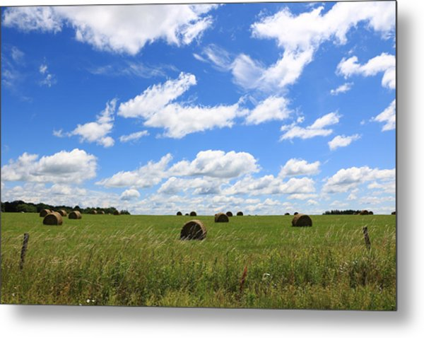 The Bales Of Summer 3 Metal Print