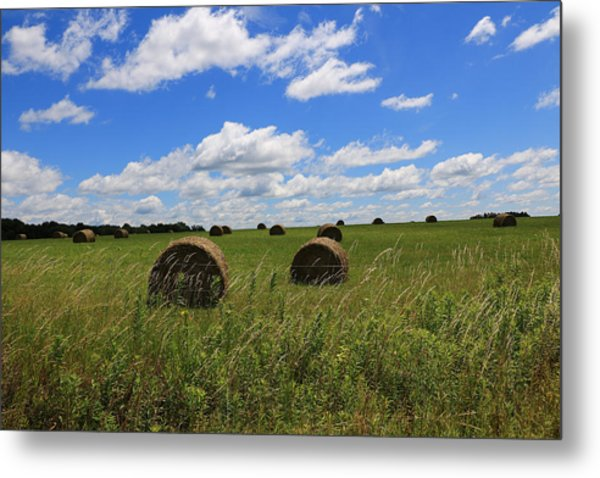 The Bales Of Summer Metal Print