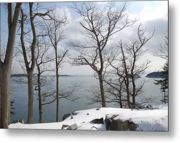 The Bay In Winter Metal Print by Faith Harron Boudreau