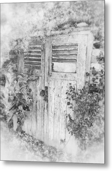 The Beauty Of Old Age Metal Print