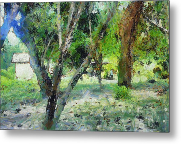 The Beauty Of Trees Metal Print