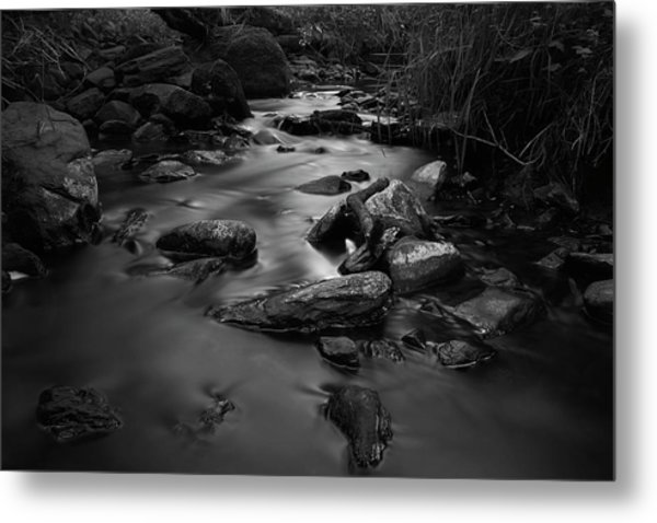 The Beck Metal Print