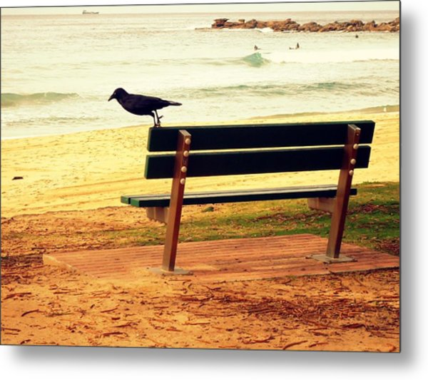The Bench And The Blackbird Metal Print
