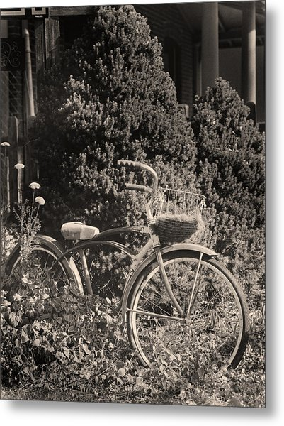 The Bicycle Garden II Metal Print by Jim Furrer