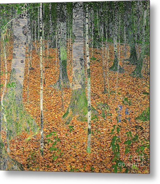 The Birch Wood Metal Print