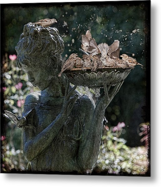 The Bird Bath Metal Print