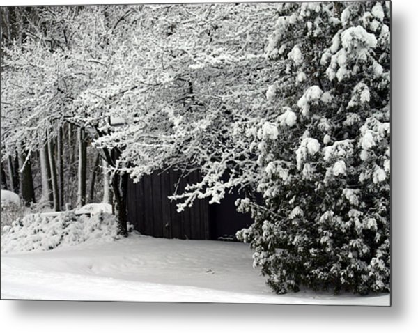 The Blizzard Is Over Metal Print by Jack G  Brauer