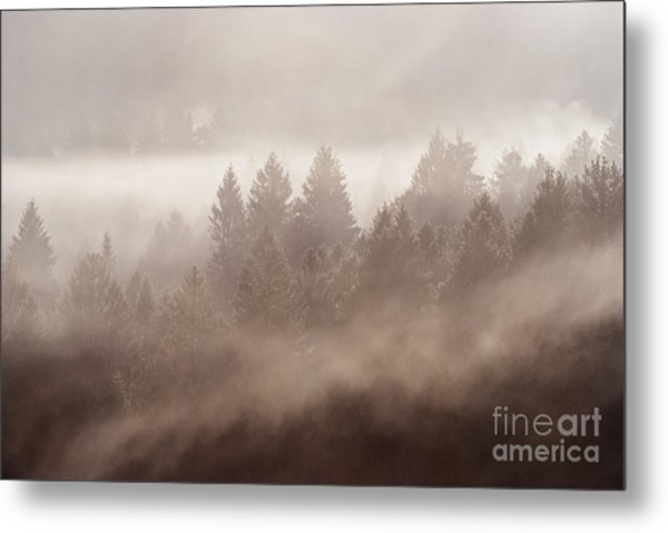 The Blow Of The Forest Metal Print