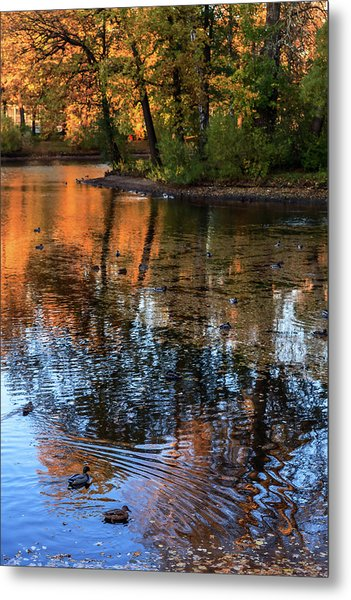 The Bright Colors Of Autumn, Quiet Evenings Are Reflected In The Waters Of The City Pond Metal Print