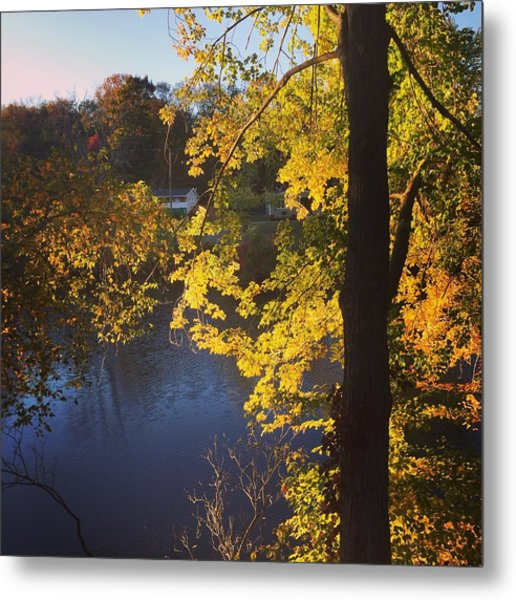 The Brilliance Of Nature Leaves Me Speechless Metal Print